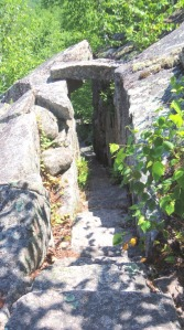Acadia Hike 11