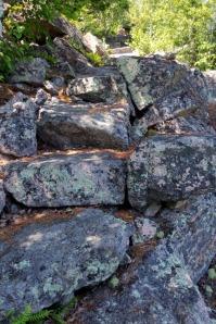 Acadia Hike 12