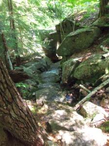 Acadia Hike 13