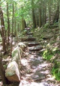 Acadia Hike 3