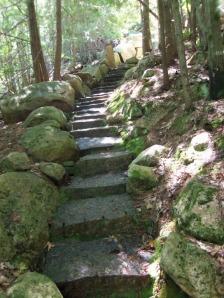 Acadia Hike 4