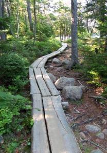 Acadia Jordan Pond 4