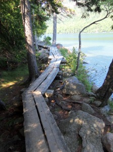 Acadia Jordan Pond 5