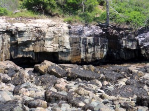 Acadia Sandy Beach 4