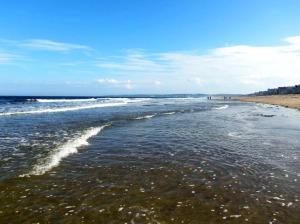 Moody Beach 1
