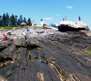Pemaquid Point 5