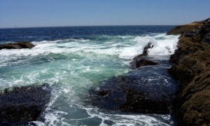 Pemaquid Point 8