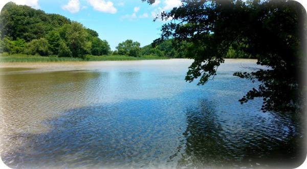 Genesee River 2