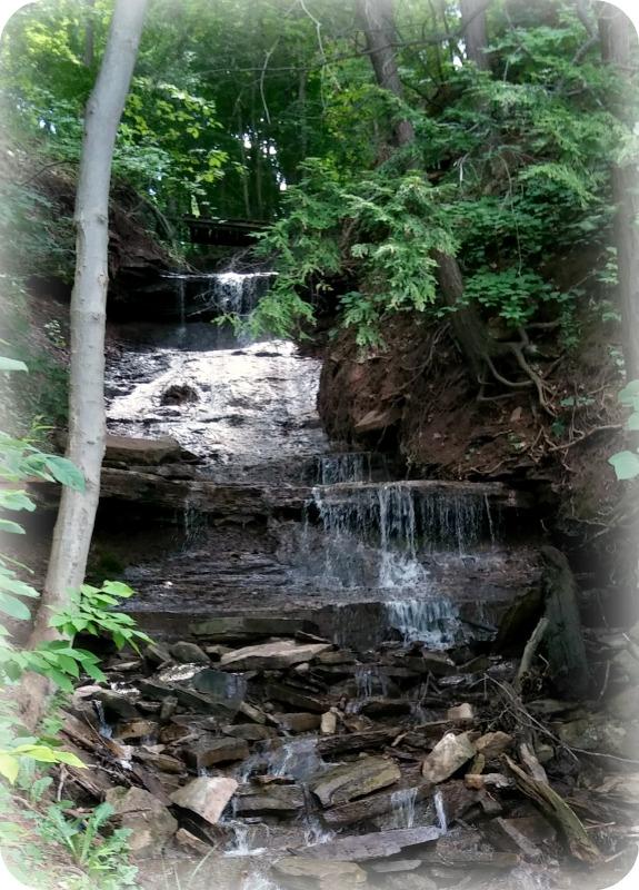 Zoo Falls