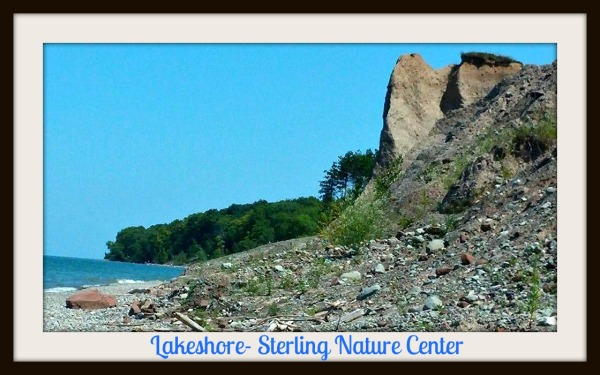 Lakeshore Sterling Nature Center