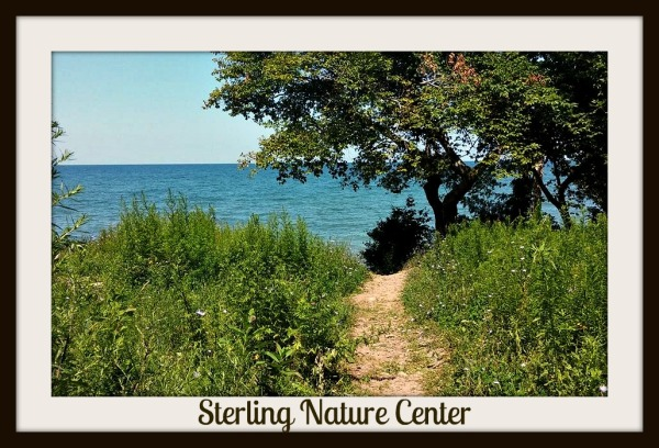 Sterling Nature Center