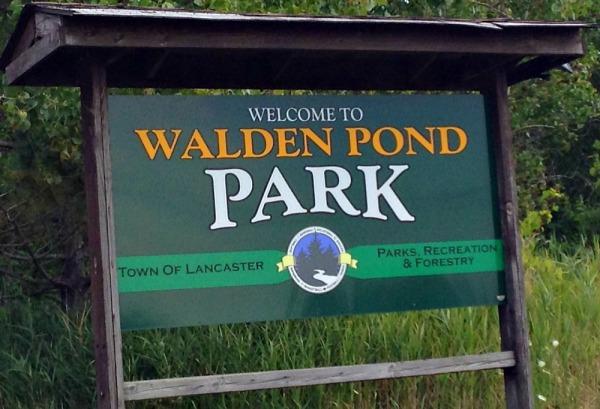 Walden Pond Park Lancaster